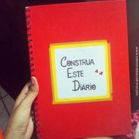 Livro Construa Este Diário