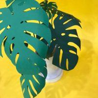 DIY: Planta de Papel (Costela de Adão)