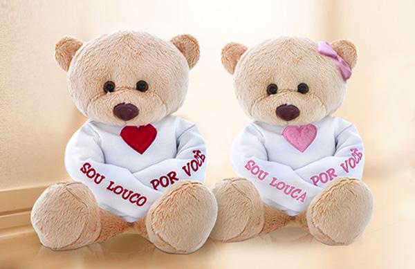 casal-de-ursinhos-embranco