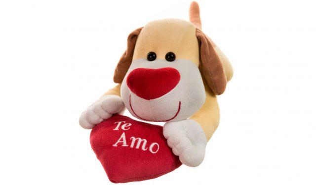 cachorrinho-coracao-te-amo-grande